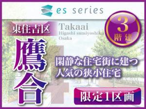 esSeries 鷹合4 (限定1区画)